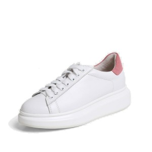 Superelephant Simple Pink Sneakers (1725-10)