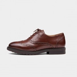 Beau Classic Wingtip Oxford Brown Lace Ups (21069)