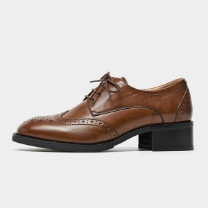 Beau Heeled Oxford Brogued Brown Lace Ups (21604)